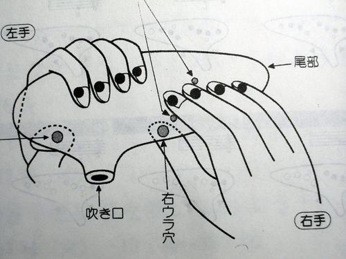 mati4-1-27.JPG
