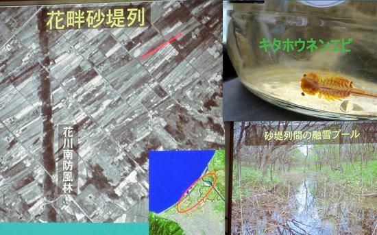 2011-12-013.jpgのサムネール画像