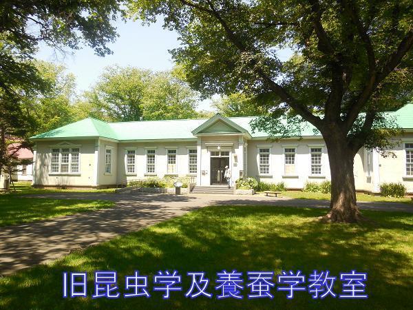 写真10 旧昆虫学及養蚕学教室.JPG