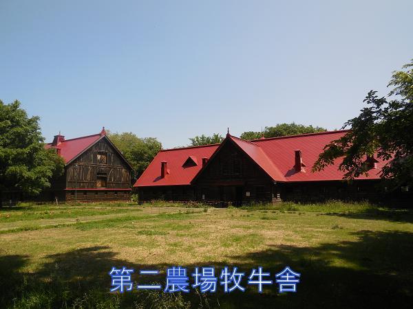 写真4 第二農場牧牛舎.JPG