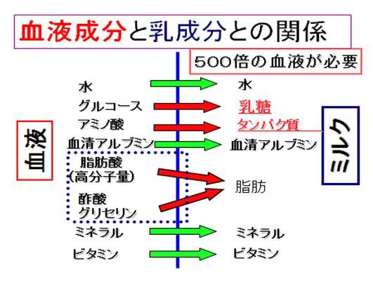 17-2-51.jpg